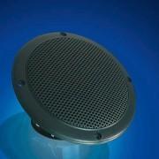 Lautsprecher schwarz für die Saunakabine